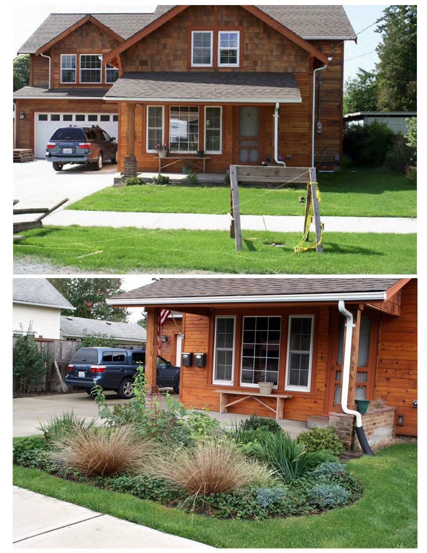 Rain Garden before and after