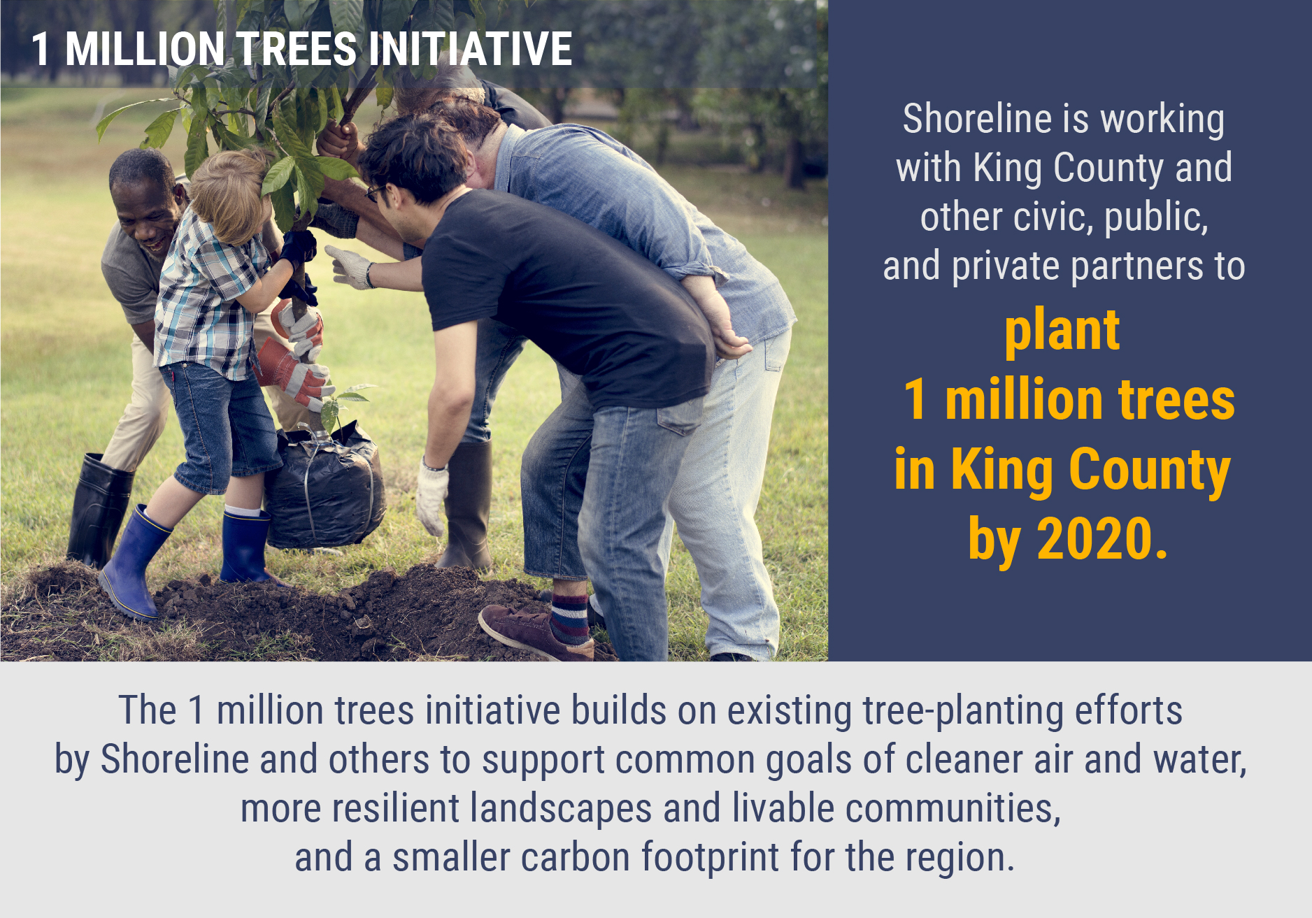 Shoreline is working with King County to plant 1 million trees by 2020.