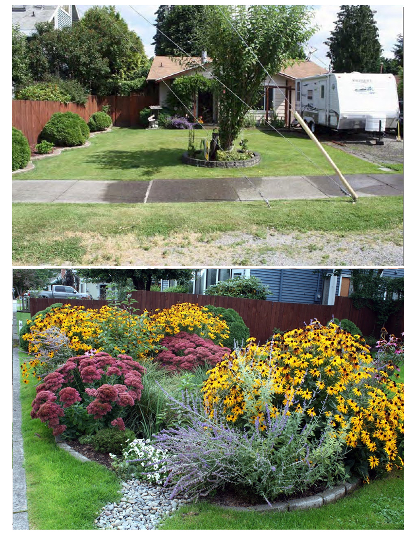 another rain garden before and after