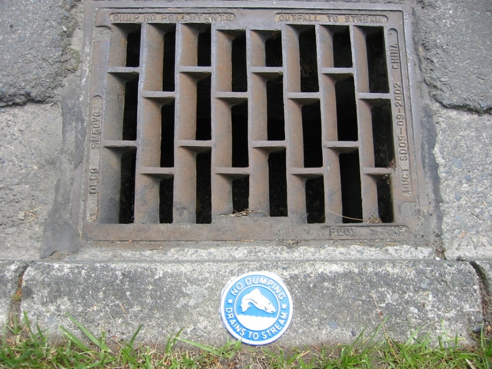 Drain with medallion