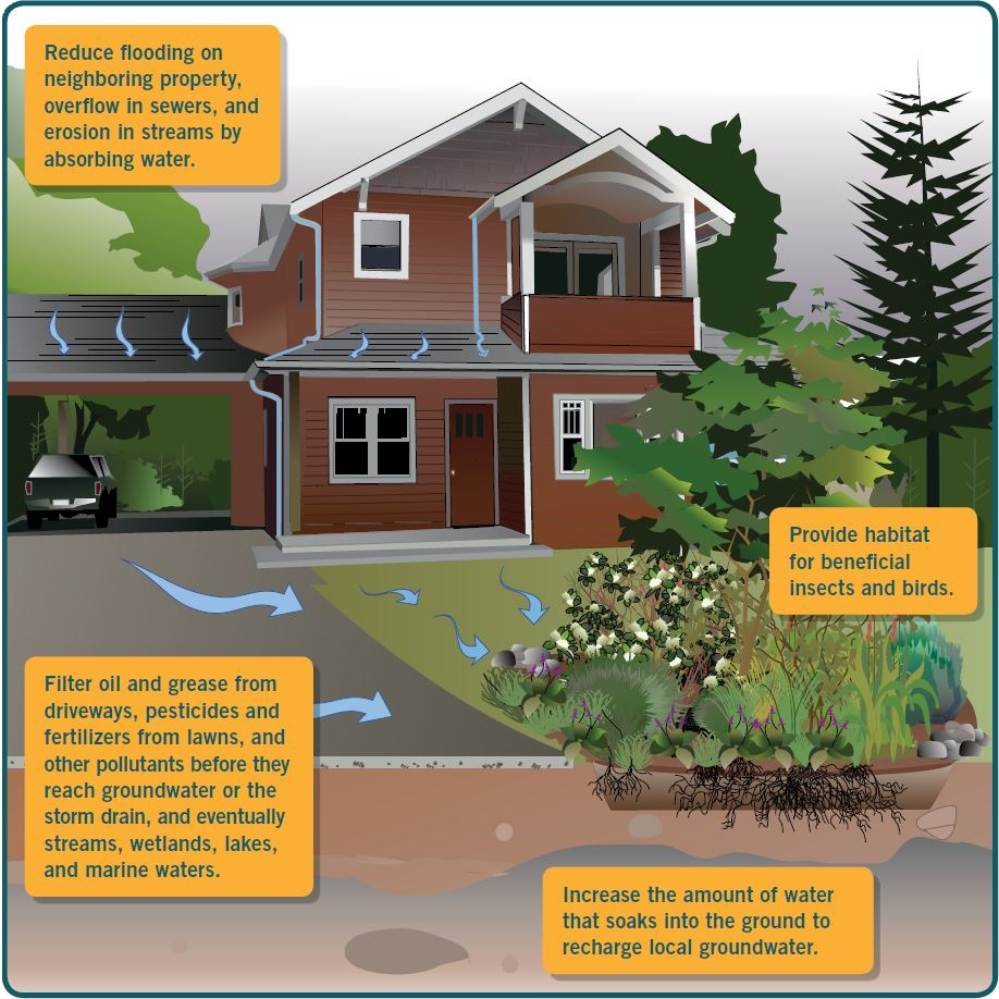 rain garden diagram on house